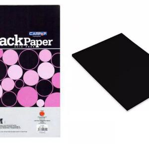 CAMPAP Black paper 4848-0
